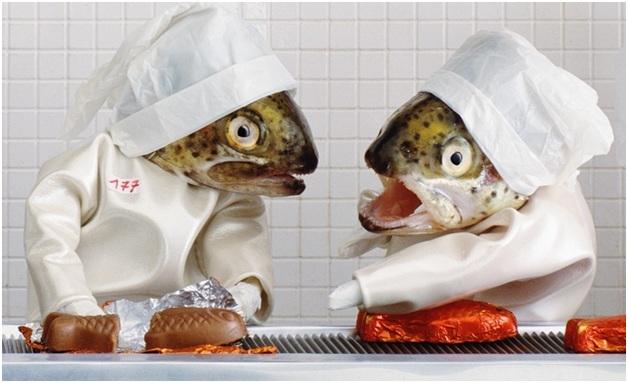 Fish Art 6