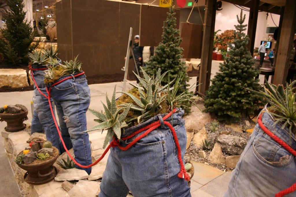 succulent-pants5-1024x682